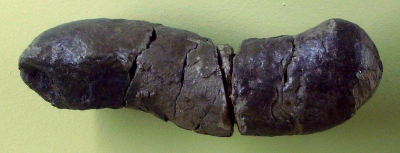 каловый камень