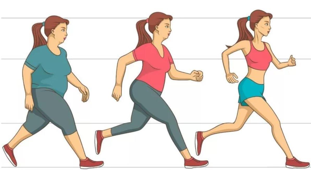 тренировки при ожирении печени